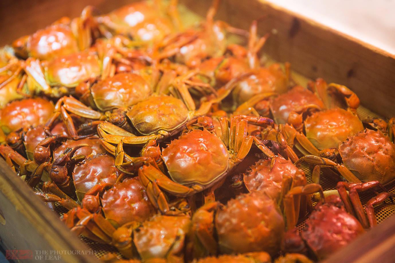 大闸蟹、梭子蟹随便吃什么感觉?杭州一五星酒店可实现,只需198