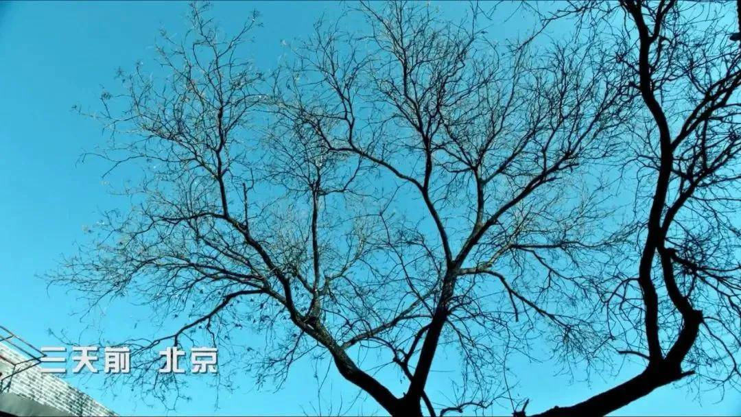 """图片[41]-北京二环内到底有没有公厕?别因为""""键盘侠""""错过这影帝影后云集的国产好剧!-妖次元"""
