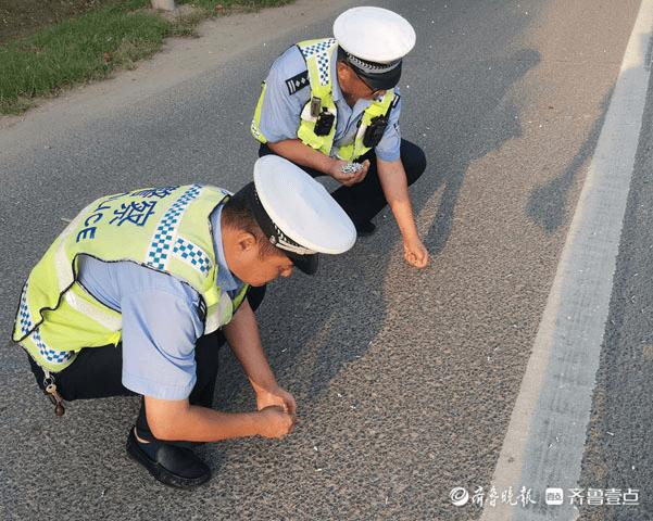 青岛城阳:两千多螺丝钉散落路面,交警徒手清理