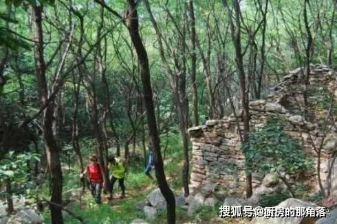 女友把登山照分享给男友,无意中看到树枝上的一物,男友脸都白了