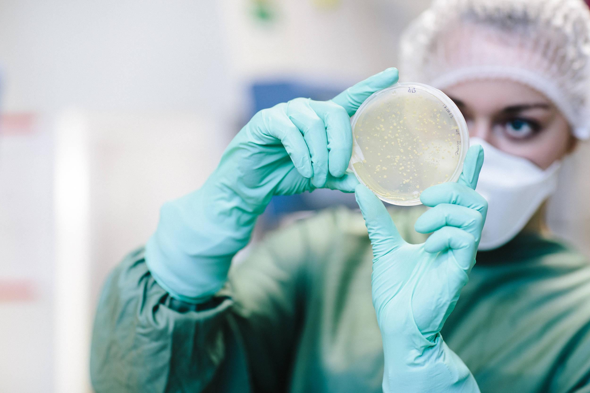 """用酵母打造""""多功能益生菌"""",科学家发现治疗炎症性肠炎新方法"""
