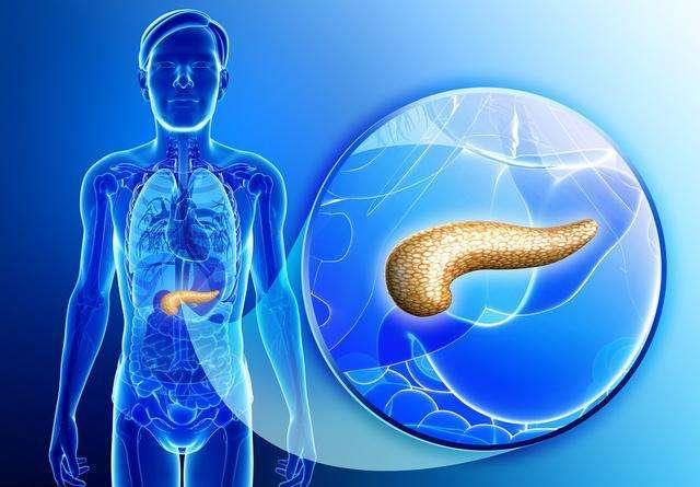 胰腺炎(非糖尿病)食疗食谱插图