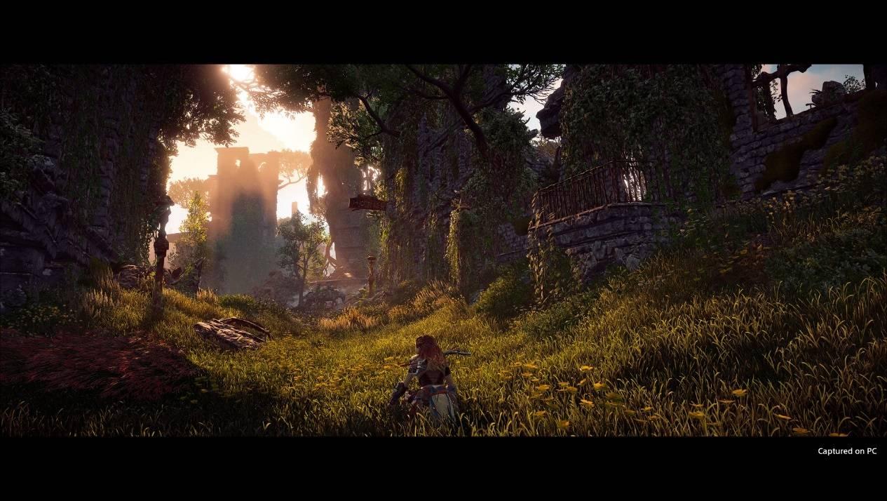 德国勒夫《地平线:黎明时分》PC 配置公