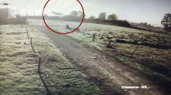 哥伦比亚小飞机空中熄火 冲入农田后滑行数十米