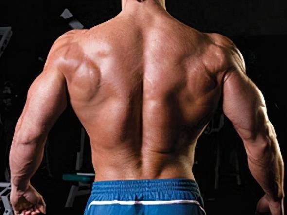 练习背阔肌的外侧和上侧,可以让我们更精神,主要有这几个动作_背部