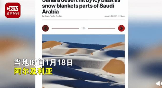 骆驼在沙漠雪中漫步(图)