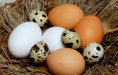 """每天吃鸡蛋,好处可能找上你!但要谨记""""五不吃"""",别再犯错"""
