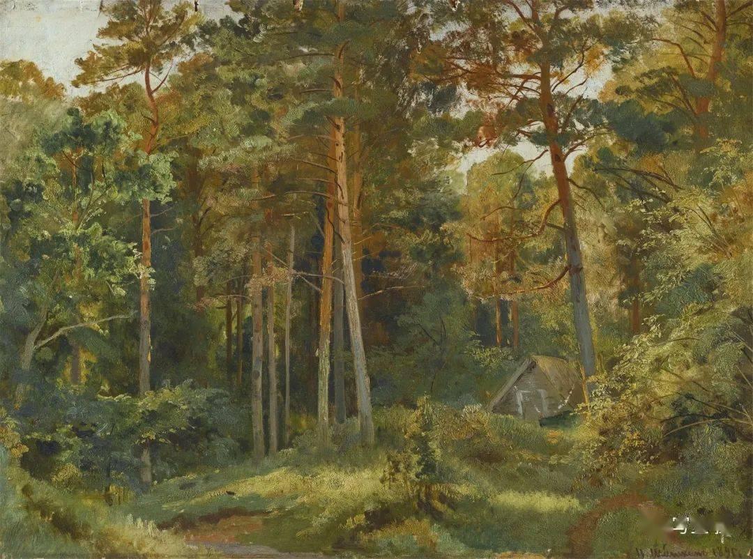 希施金的风景画欣赏
