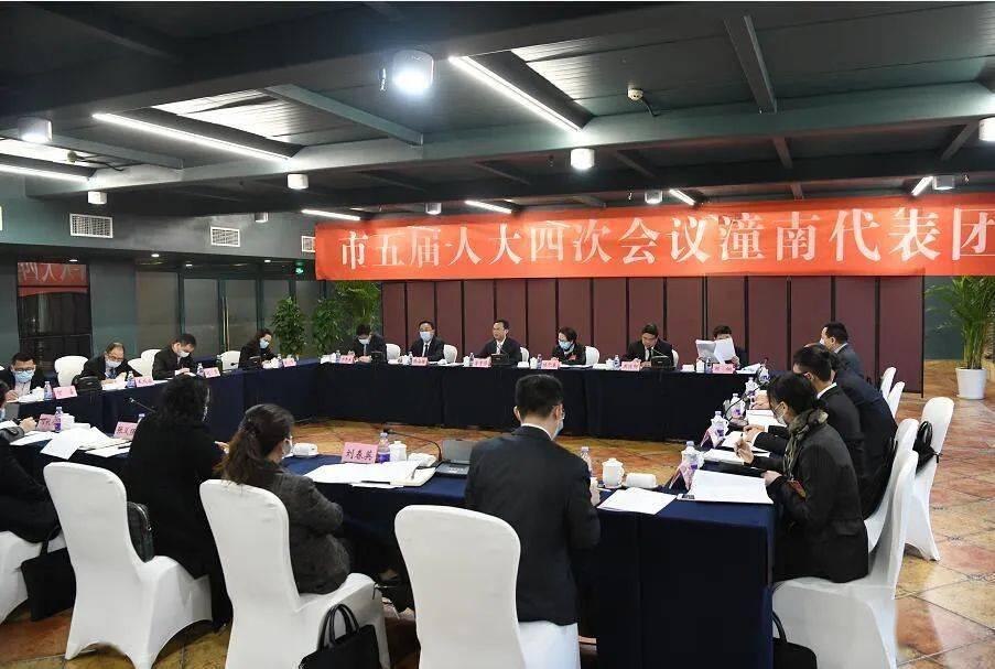 """潼南代表团举行全体会议 审查市""""十四五""""规划纲要(草案)"""
