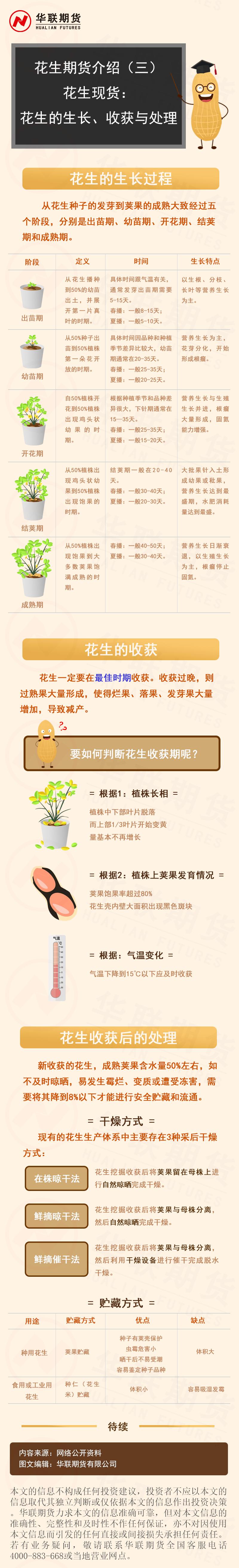 [图片]花生期货介绍(三)花生现货|花生生长过程、收获及处理