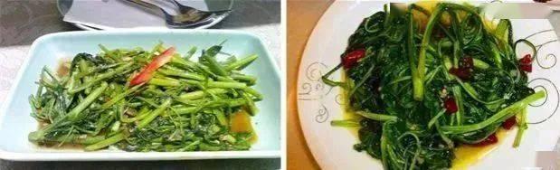 厉害啦!在山西,这12种野菜只有到了春天才有吃~  第25张