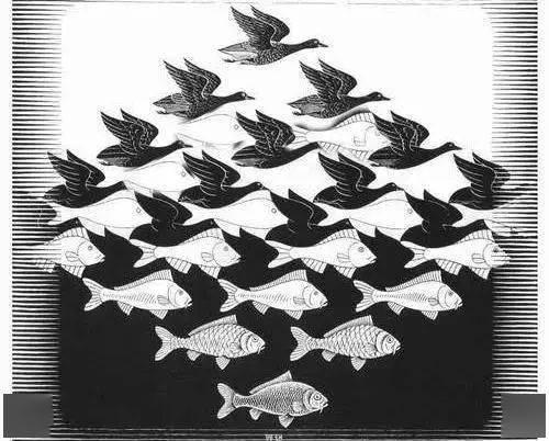 第一眼看到鱼还是大雁?测出你的隐藏的性格