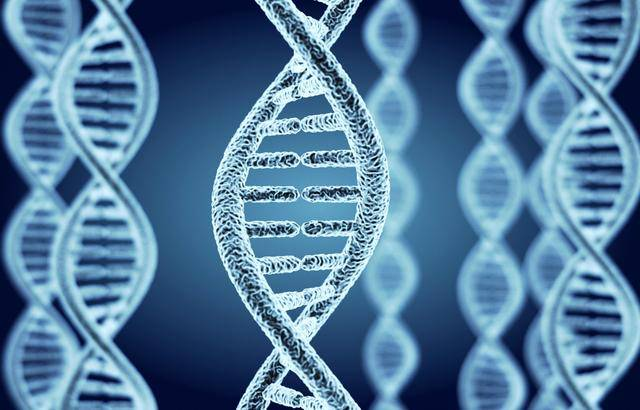 新基因工具可按时序编辑DNA序列,有望加深对癌症的了解