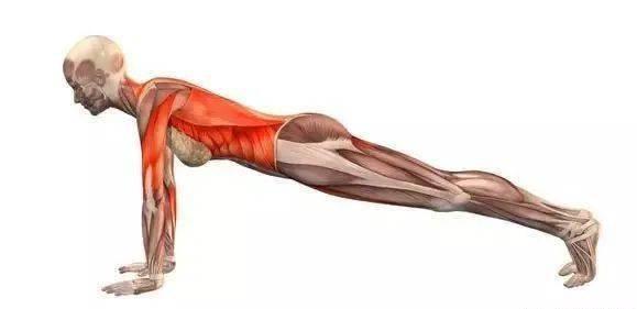 瑜伽斜板式瘦腰不明显?9个动作让你练到腹部炸裂!(附动图)