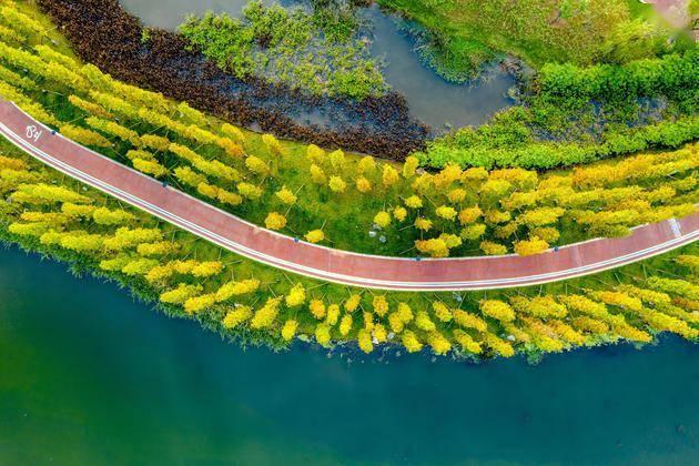 公园城市首提地跑向世界级城市的路径