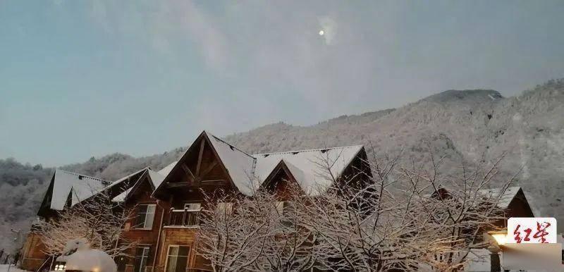成都这里又下雪了!春日雪景美如童话