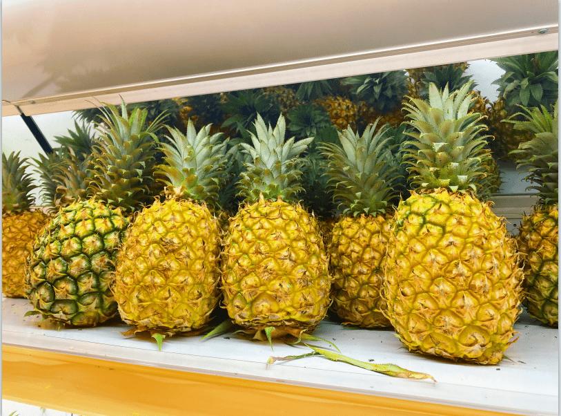 南方医生说|吃菠萝的科学指南