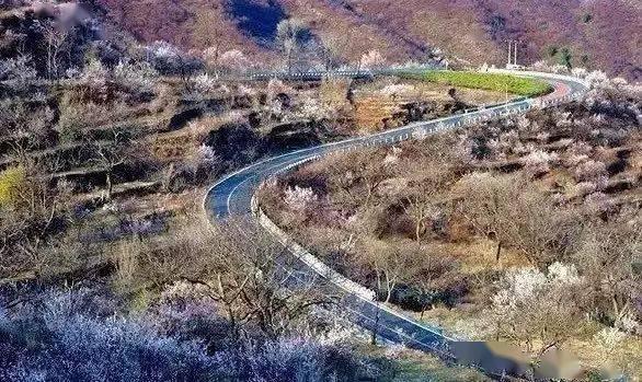 """北京周边隐藏着一个""""小西藏"""",花开似海!这样的美景还真的不多!"""