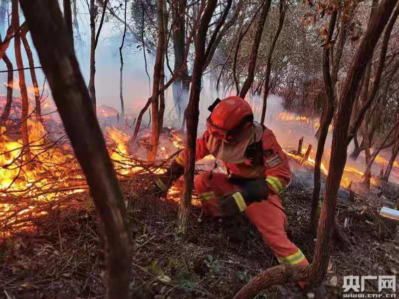 昆明市蟠龙森林大火用火已被消灭火灾现场转到值班环节