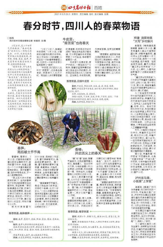 """泸州龙马潭:小狐狸""""上学堂"""""""