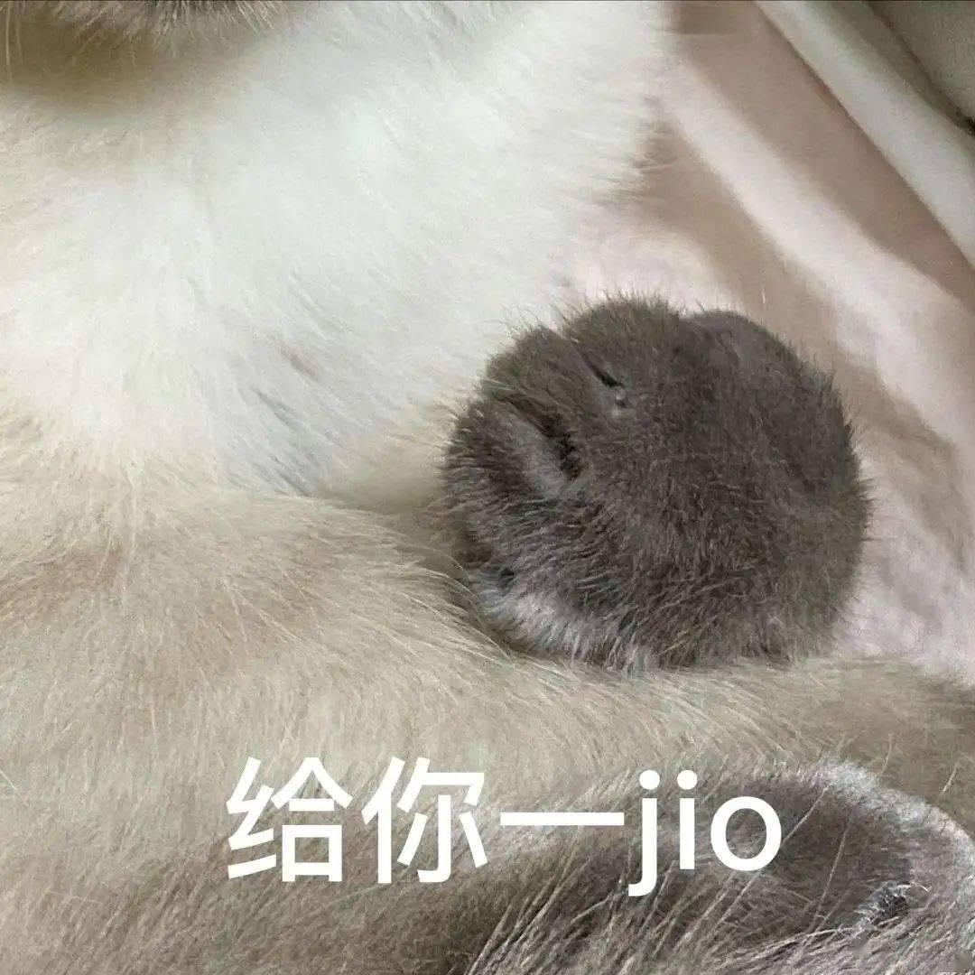 """""""韩国最小煤老板""""出道,凭生气脸走红ins!"""