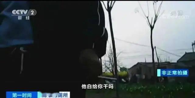 央视曝农村改造厕所轻轻一踩就碎了