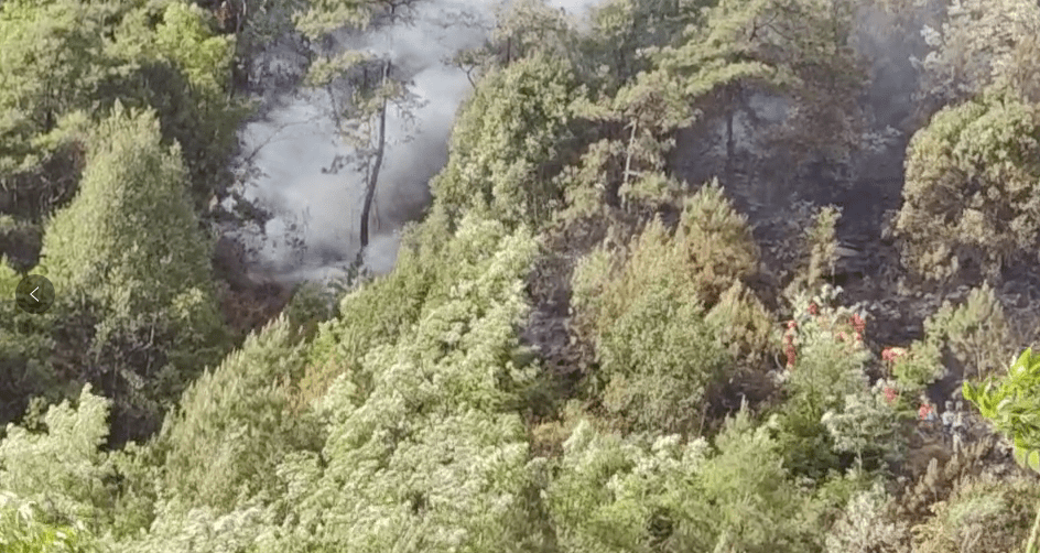 凉山州冕宁县石龙镇森林火灾最新情况:投入地面力量890余人、直升机5架
