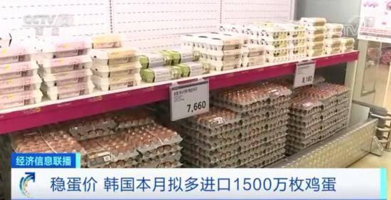 """不""""蛋定""""了?韩国宣布:追加进口1500万枚鸡蛋,以稳定市场供应"""