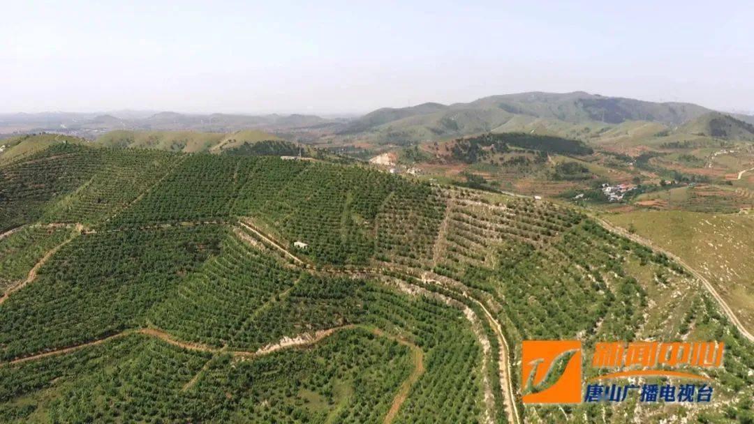 滦州:打造森林小镇 发展旅游产业【视频】