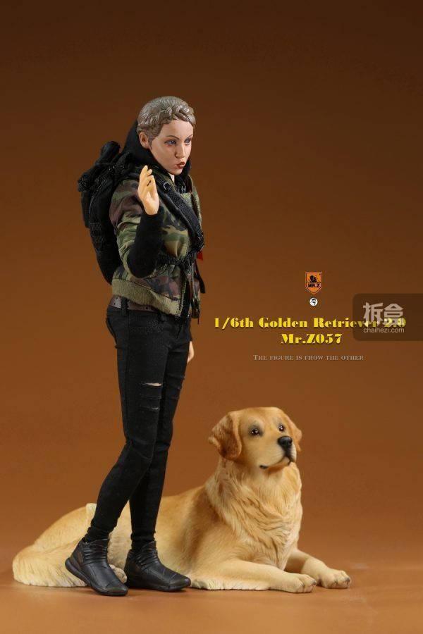 MR.Z 金毛犬2.0 1/6仿真动物模型 迷你GK摆件雕像兵人配件