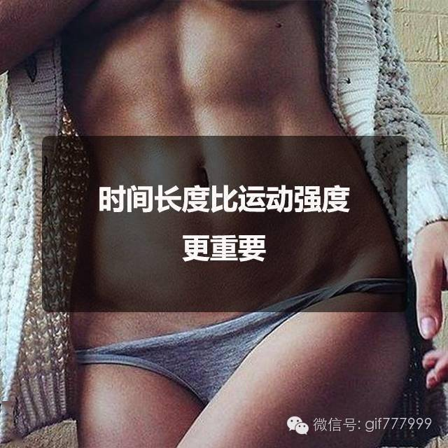 星辉待遇-首页【1.1.1】