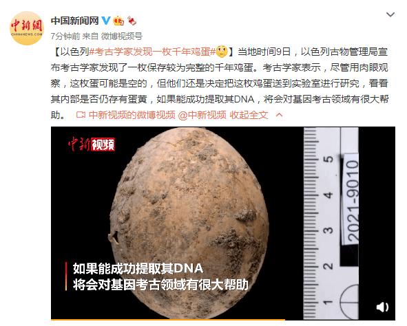 鸿图2注册以色列考古学家发现一枚千年鸡蛋!专家:可能是空的 (图2)