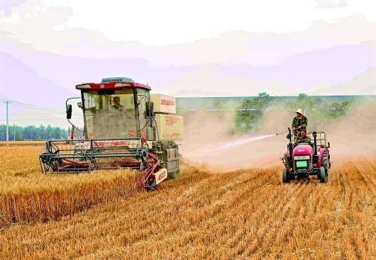 快评丨农民割麦还得花钱喷淋降尘?环保治理不能不食人间烟火