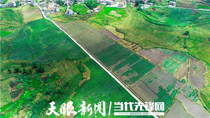 定南县东山村gdp_龙南 定南 全南 江西赣州三南,哪个县城最大