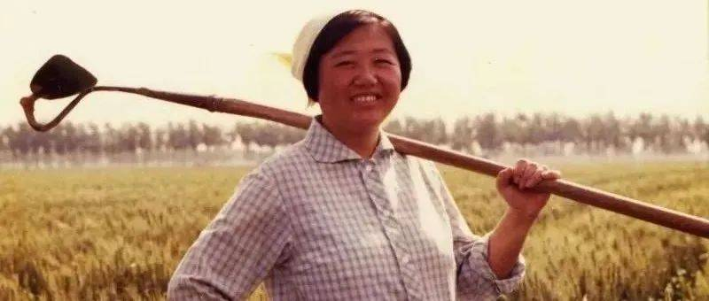 """河北省临西县玉兰小学""""学玉兰做主人""""育人模式的实践探索"""