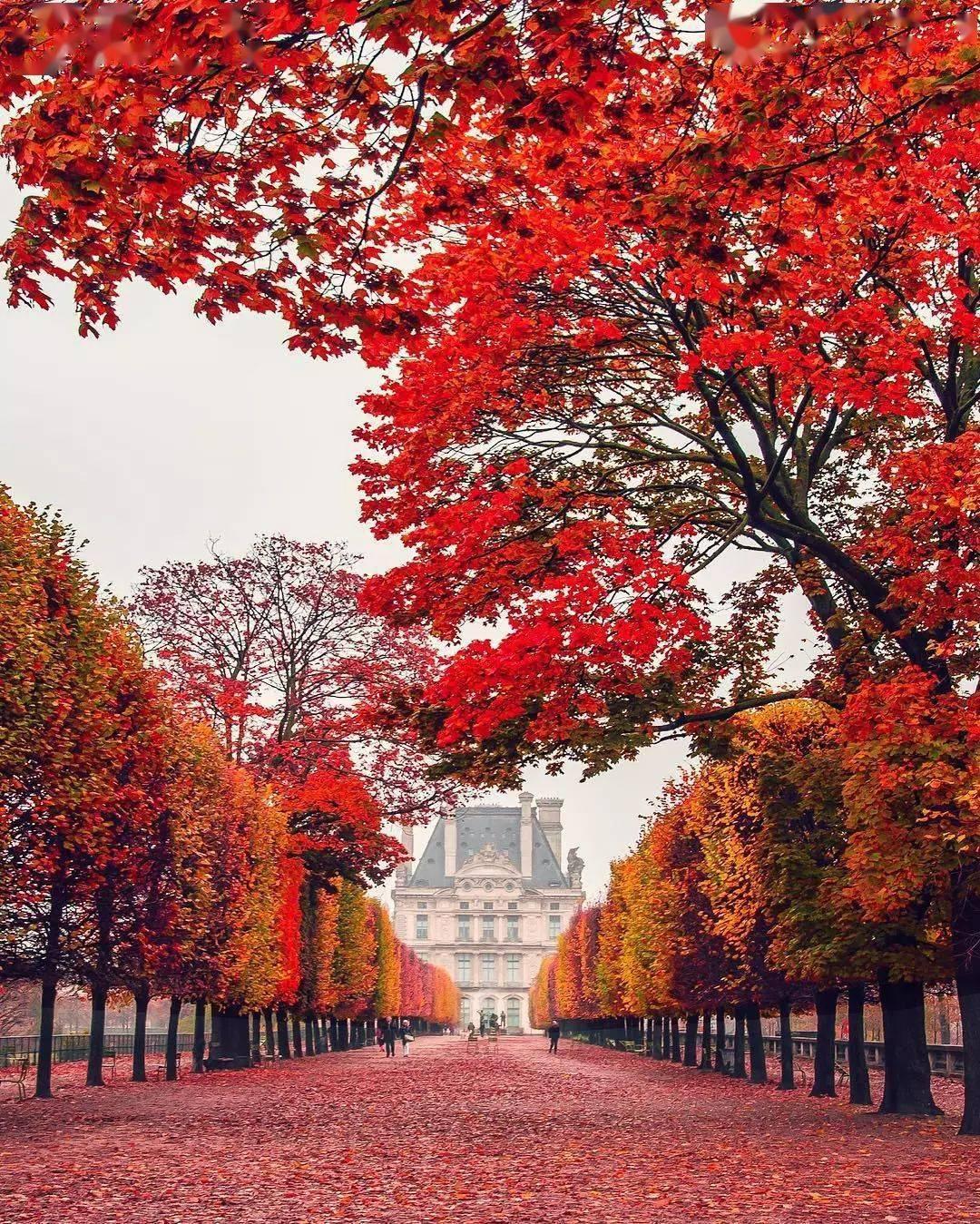 秋天的世界,世界的秋天  秋天的农民作文怎么写