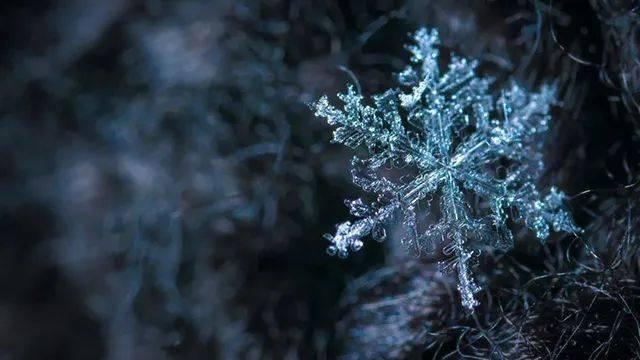 2021拉尼娜最新进展情况 拉尼娜现象是什么意思今年冬天到底冷不冷?