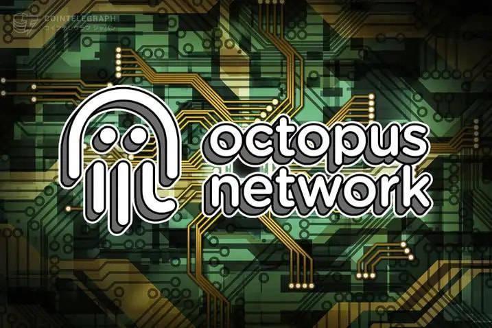 为「应用链」而生——新亮相的章鱼网络能否成长为新巨头?